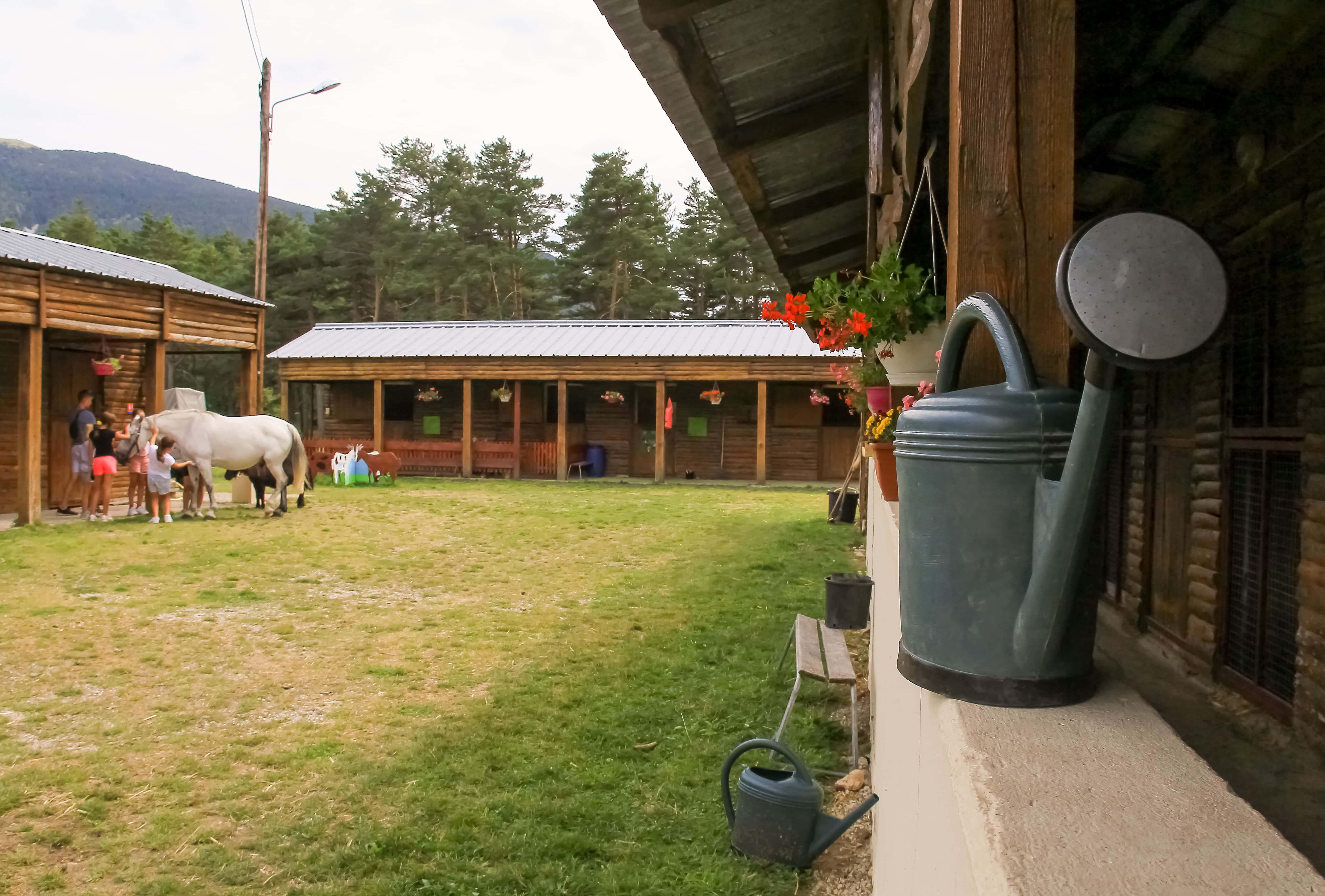 la ferme et le centre avec des animaux chevaux la bastide du logis du pin